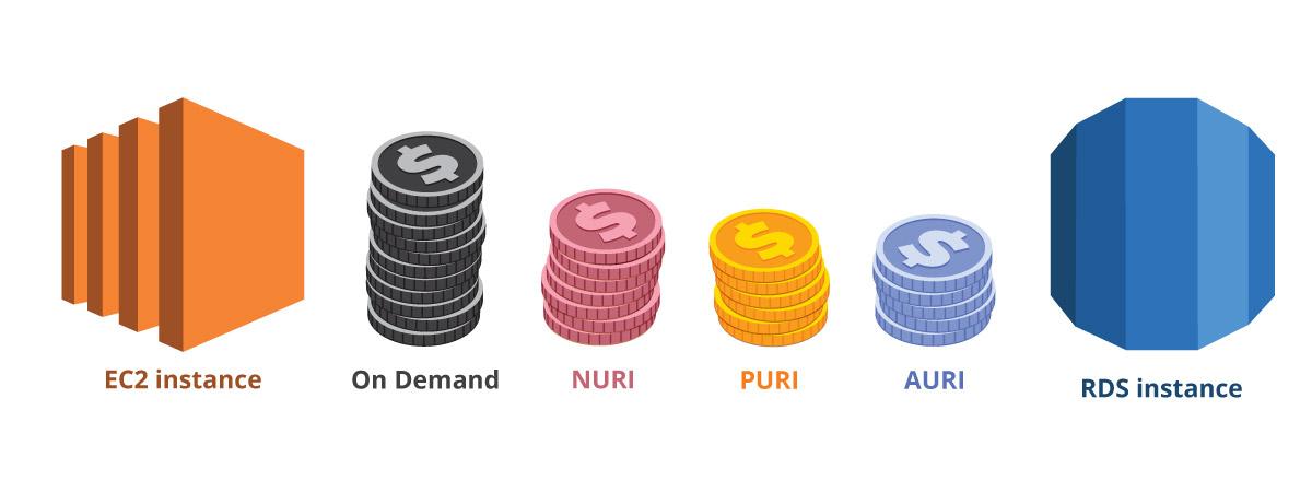 Webapper: Cloud Economics & AWS - PURI NURI AURI